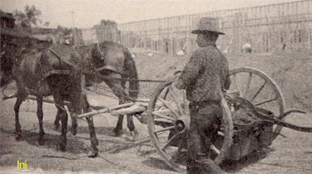 Horse Drawn Construction